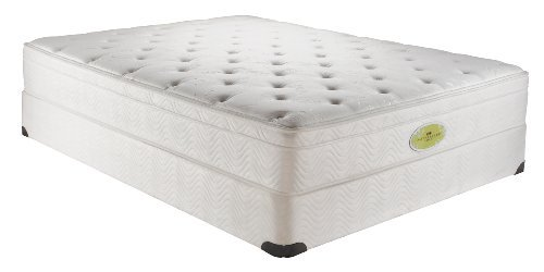 Simmons Natural Care Betterley Forest Euro Top Mattress Set