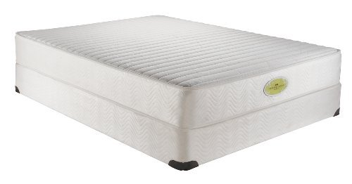 Simmons Natural Care Betterley Forest Plush Firm Twin Mattress Set